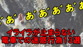 電車 迷惑行為 マナー啓発 イライラ
