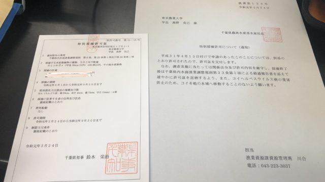 千葉県 特別採捕許可申請 方法 必要な書類